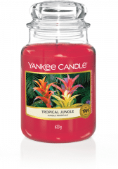 Yankee Candle Tropical Jungle - Prana Puur | Cadeau winkel Roden