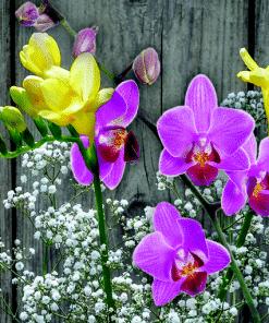 Geurlamp vloeistof Freesia Orchid - Prana Puur | Cadeau winkel Roden