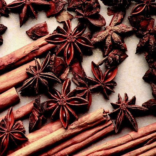 Geurlamp vloeistof Oriental Spice - Prana Puur | Cadeau winkel Roden