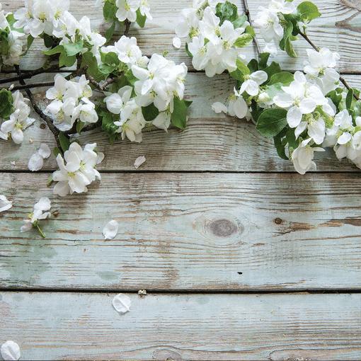 Geurlamp vloeistof White Velvet - Prana Puur | Cadeau winkel Roden